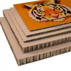 Stampa su forex, stampa su alluminio e cartone